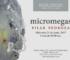 Micromegas / Pilar Pedroza