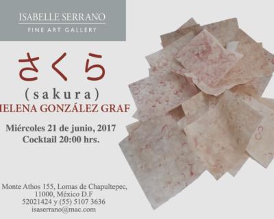 Sakura / Helena González Graf